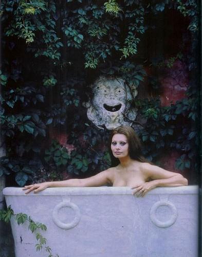 Sophia Loren.jpg